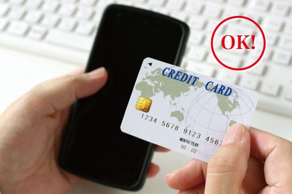 お持ちのクレジットカードでお支払いが可能です。<br>※事前にカードの上限金額を御確認ください。